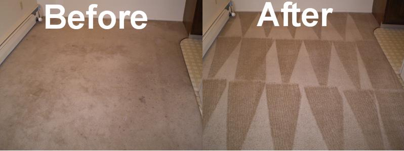 Carpet Cleaning Harbor Carpet Amp Upholstery Cleaning