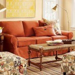 Comfortable Living Room Modern Couches and Sofa